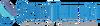 Logo SkinTellect